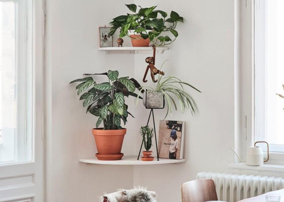 DIY Quarter Circle Corner Shelves