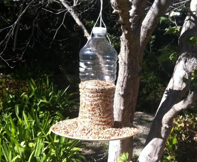 5 Minute Bird Feeder