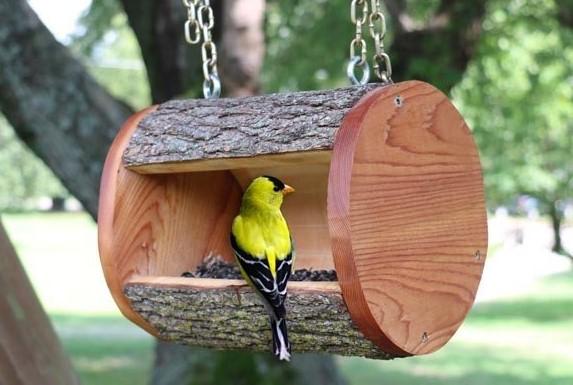 DIY Bird Feeder Plans Homemade Log Birdfeeder 1