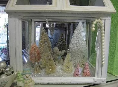 Winter Display Case