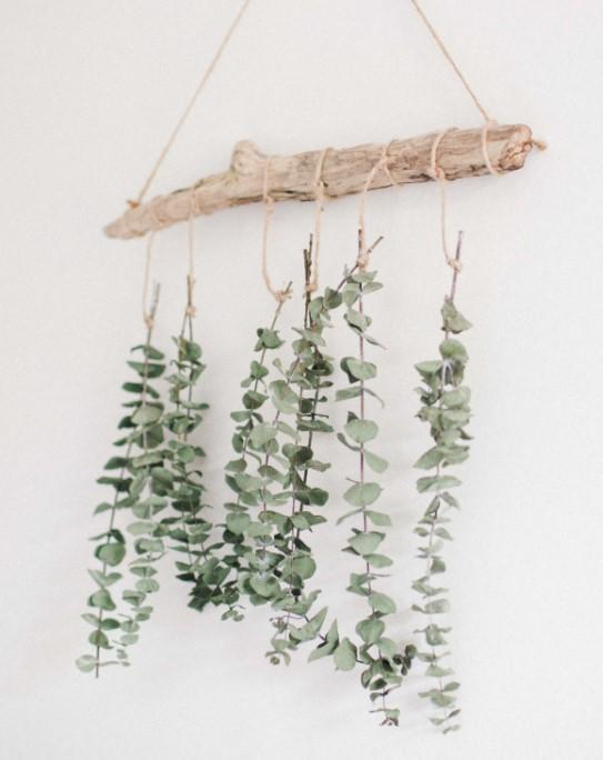 diy wall decor from dried eucalyptus