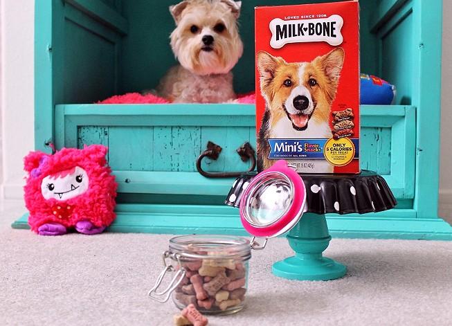 DIY DOG CABINET