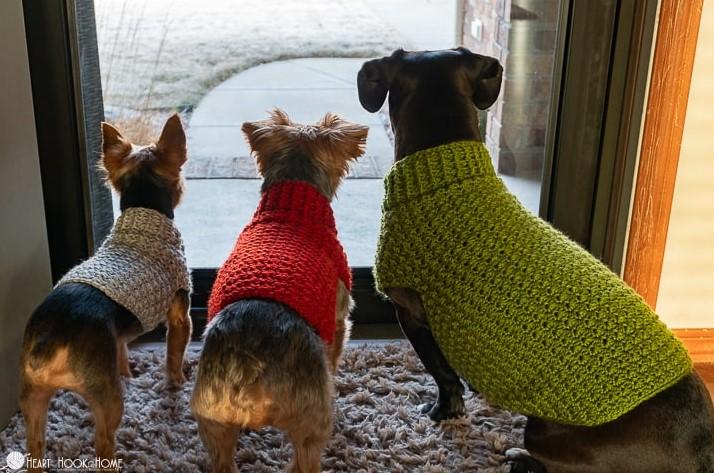 Dandy Dog Sweater Easy Crochet Dog Sweater Pattern