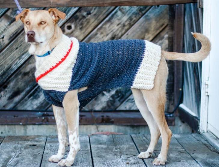 Easy Crochet Dog Sweater – Free Pattern in Nine Sizes