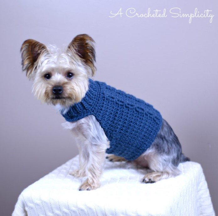 FREE CHARITY CROCHET PATTERN CABLED DOG SWEATER