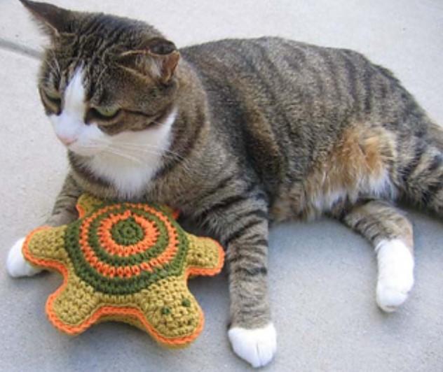 Pet Turtle Toy
