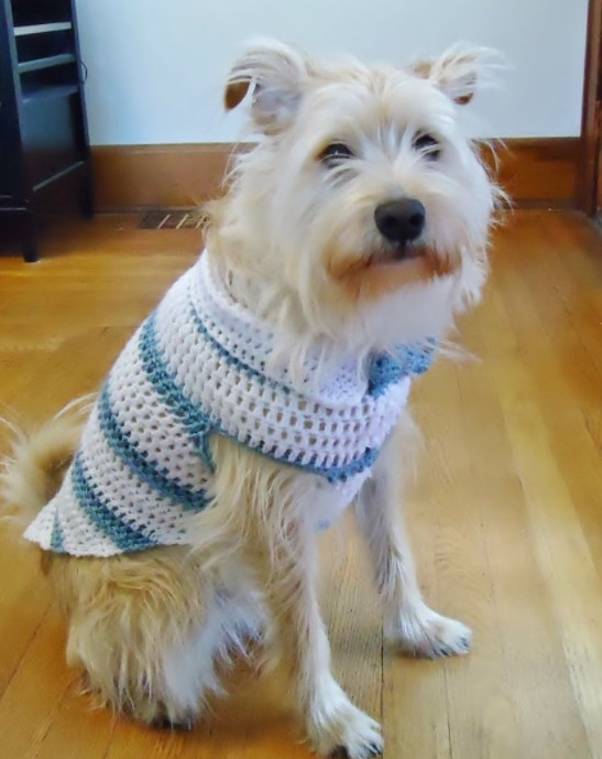 Spring Striped Dog Sweater With Collar