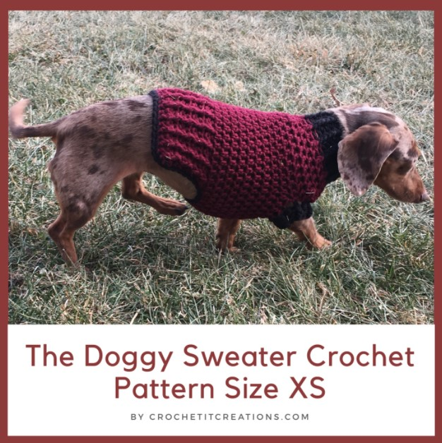 the doggy sweater size