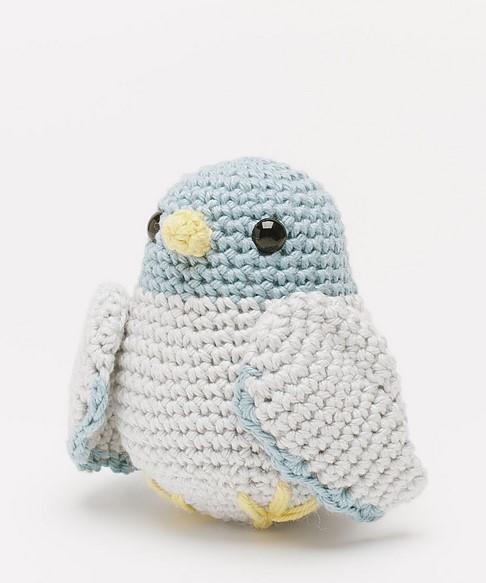 Homer Pigeon 2559